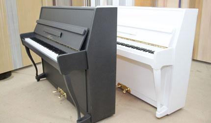 sonette-005-gorizont-img